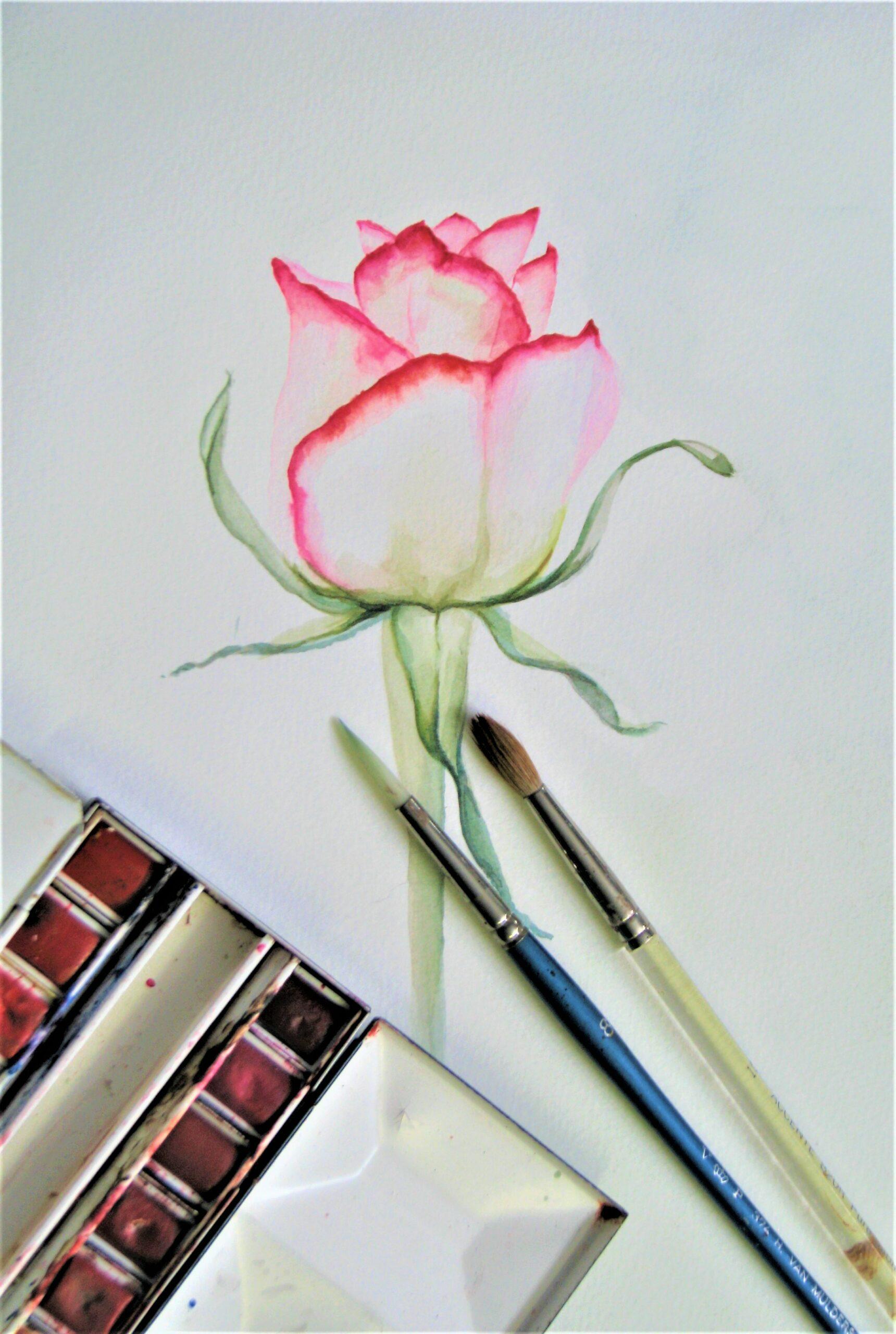 Basis bloemschilderen Altijd al een realistisch bloemschilderij willen maken maar je weet niet hoe te beginnen en ook geen 3 jaar cursus volgen? Wij hebben een programma uitgewerkt dat dit voor iedereen mogelijk is